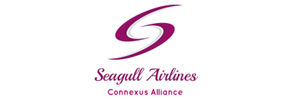 Seagull Airlines 3a.png